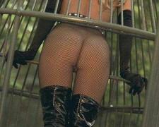 Pamela Anderson (27)