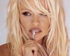 Pamela Anderson (43)