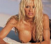 Pamela Anderson (48)