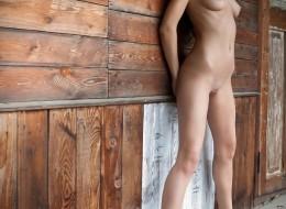 Czarnulka w drewnianej chatce (7)
