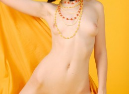 Bruneta na żółtym tle (8)