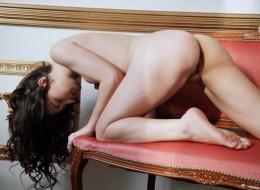 Laska na salonach (7)