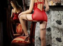 Laska na krześle przed lustrem (10)